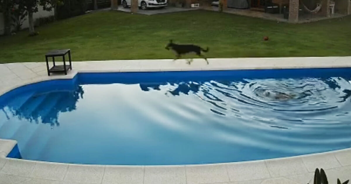 This image has an empty alt attribute; its file name is pool.jpg
